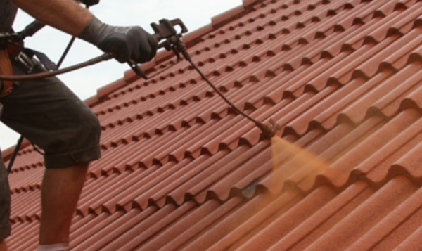 Roof paint and protection