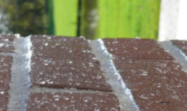 How to treat penetrating damp