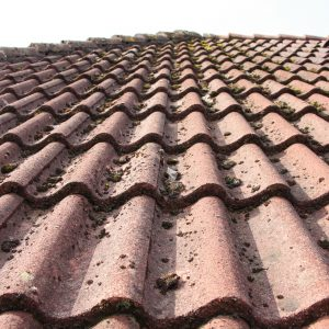 roof tile paint
